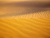 Golden Sands — Stock Photo