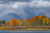Magnificent Tetons — Stock Photo