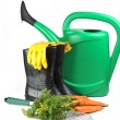 Carrot and gardening tools — Stockfoto