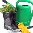 Carrot and gardening tools - Stockfoto