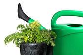 Zahradnické nářadí — Stock fotografie