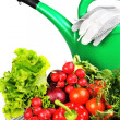 Watering can and vegetables. — Stock Photo #2987049