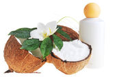 Coconut and massage oil — Стоковое фото