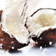 Cracked coconut with splash - Stock Photo
