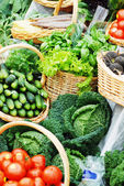 Many different ecological vegetables — Stock Photo