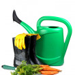 Carrot and gardening tools - Stock fotografie