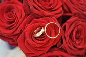 Roses and gold rings — Stok fotoğraf