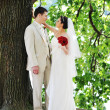 Groom and  bride — Stock Photo #3493227