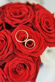 Růže a zlaté prsteny — Stock fotografie