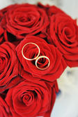 Rosas y anillos de oro — Foto de Stock