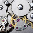 Watch gears close up — Stock Photo #3631926