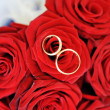 Roses and gold rings — Stock Photo