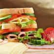 Tasty sandwich — Stock Photo #3852373