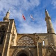 Selimiye mosque — Stockfoto