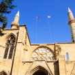 Selimiye Mosque — Foto Stock