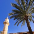 Mosque — Stock Photo #3196340