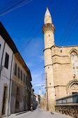 Noord cyprus moskeeën — Stockfoto