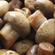Pickled mushrooms — Stock Photo #2685583