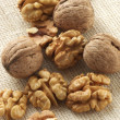Walnuts — Stock Photo #2691342