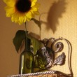 Shelf with sunflower — Stock Photo