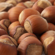 Hazelnuts — Stock Photo #2693571