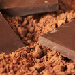 Chocolate and cocoa — Stock Photo