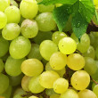Royalty-Free Stock Photo: White grape