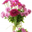 Bouquet of chrysanthemums — Stock Photo #2830172