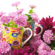 Cups in flowers — Stock Photo