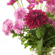 Bouquet of chrysanthemums — Stock Photo