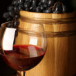 Red wine, grape and barrel — Stockfoto