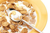 Breakfast cereal with milk — Stock Photo