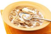 Snídaňové cereálie s mlékem — Stock fotografie