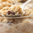 Muesli with milk close-up - Stock Photo