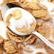Royalty-Free Stock Photo: Breakfast cereal with milk