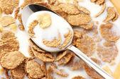 Cereales para el desayuno con leche — Foto de Stock