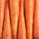 Carrots — Stock Photo #3268080