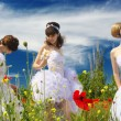Three brides - Stock Photo