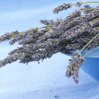Royalty-Free Stock Photo: Buhch of lavander