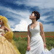 Two brides — Foto de Stock