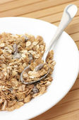 Muesli in lamiera — Foto Stock