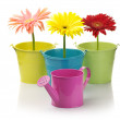 Colorful buckets, watering can and gerberas — Stock Photo #3664050