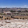Royalty-Free Stock Photo: The Old City of  Jerusalem