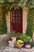 Old house door — Stock Photo