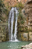 Waterfall in Negev desert — Stock Photo