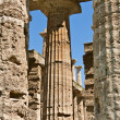 Temple Of HerColumns, Paestum, Italy — Stockfoto #2708213