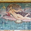 Stock Photo: Venus fresco in House of Venus, Pompeii