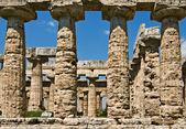 Tempel van hera colonnade, paestum, italië — Stockfoto