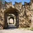 Old Town Gate — Stock Photo #2721778
