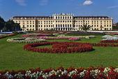 Schonbrunn sarayı bahçelerine, viyana — Stok fotoğraf